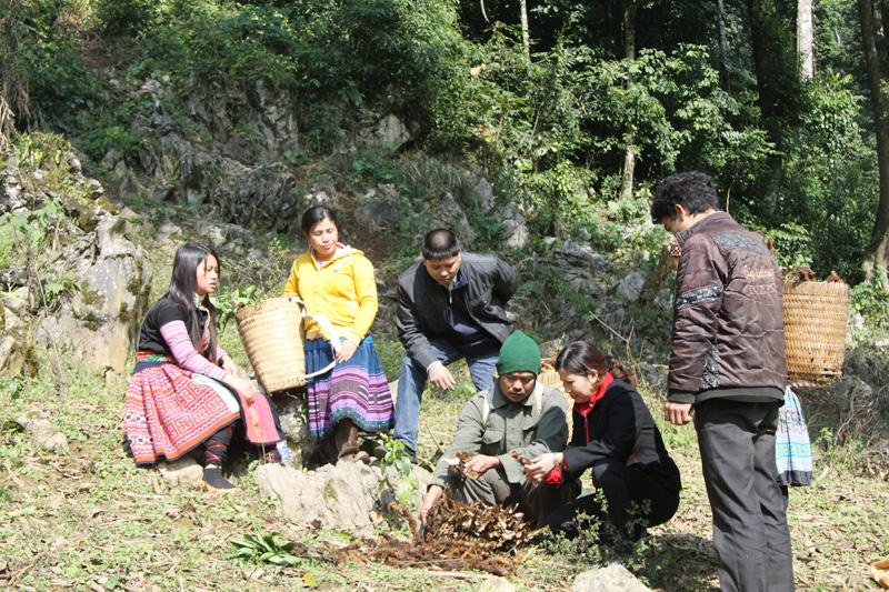 TGĐ Lê Thị Bình lên vùng núi tìm dược liệu cùng bà con dân tộc
