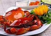 """Mùa du lịch: ăn hải sản càng phải nhớ """"6 không"""""""
