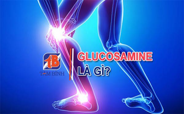 Glucosamine giúp hỗ trợ điều trị các bệnh về xương khớp