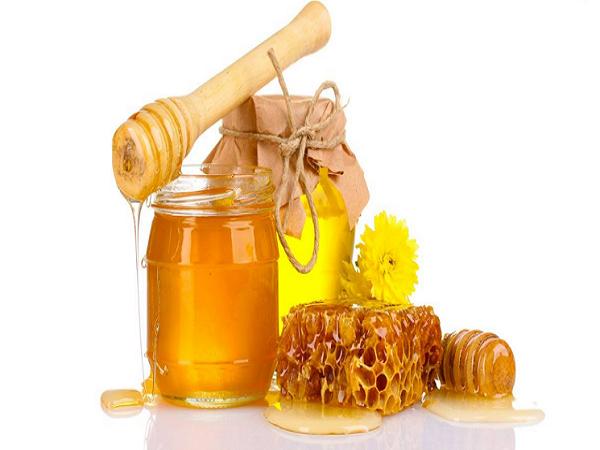 Mật ong có tính kháng khuẩn cao