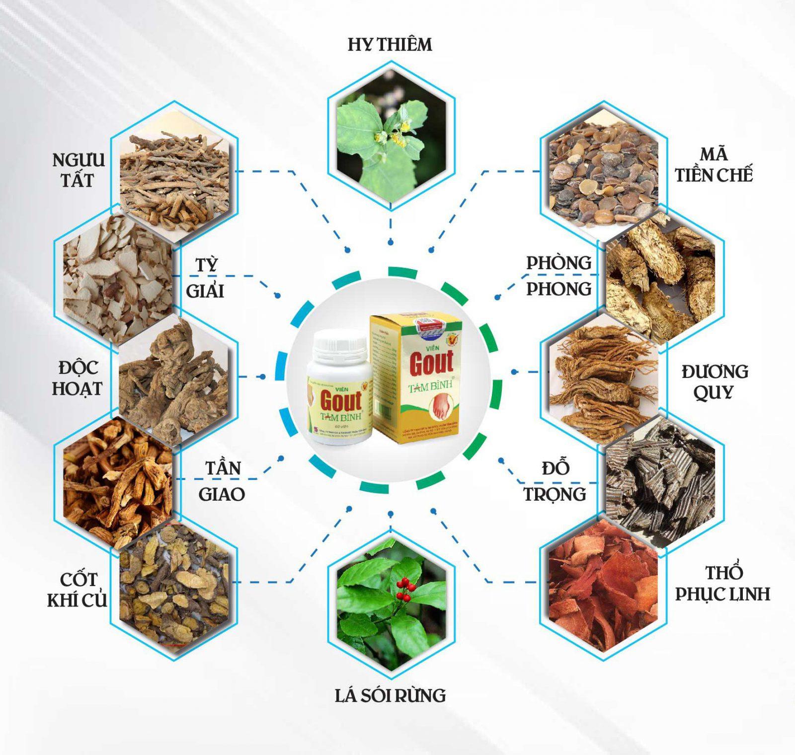 Viên Gout Tâm Bình được bào chế từ 12 vị thảo dược thiên nhiên.