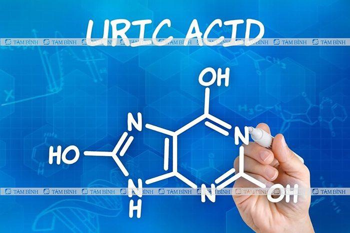 Chỉ số acid uric là gì