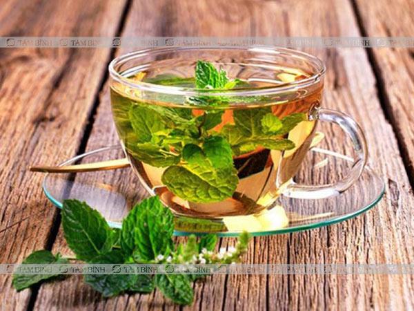 Bạn có thể chữa rối loạn tiêu hoá tại nhà bằng trà bạc hà