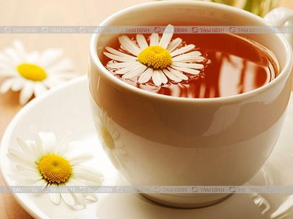 Trà hoa cúc giúp chống viêm, giảm đau cực hiệu quả