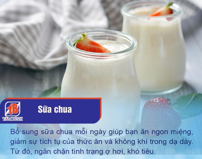 Sữa chua chứa nhiều enzyme và lợi khuẩn tốt cho hệ tiêu hoá