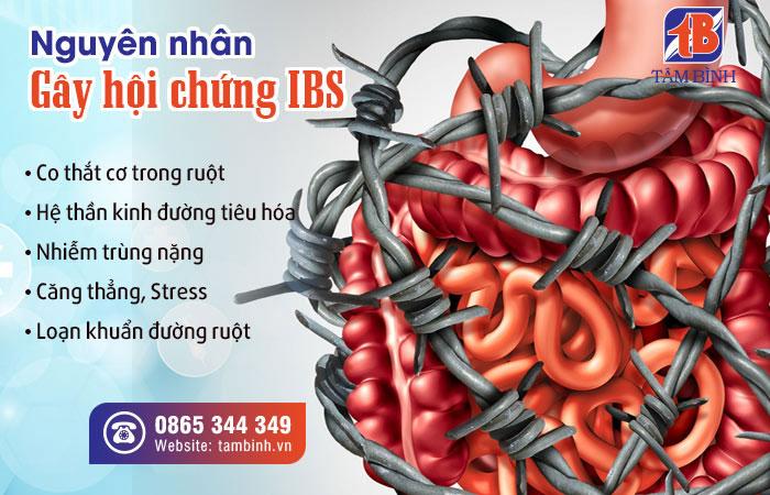 Nguyên nhân hội chứng ruột kích thích