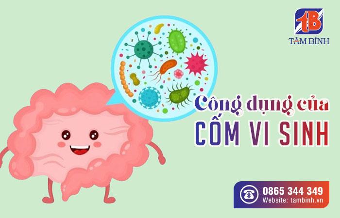 công dụng của cốm vi sinh