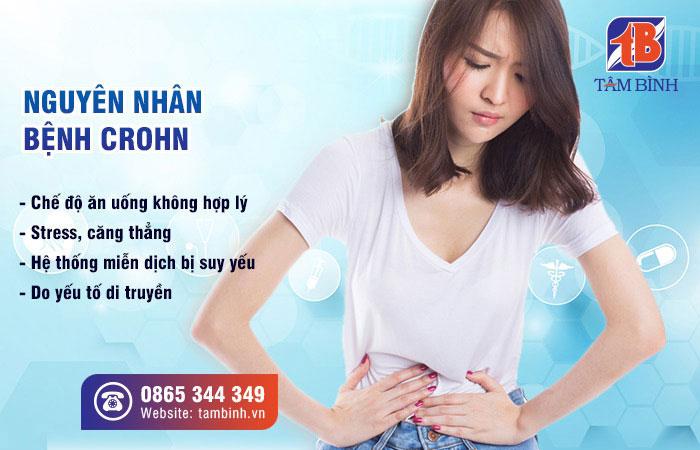 Một số nguyên nhân gây bệnh crohn
