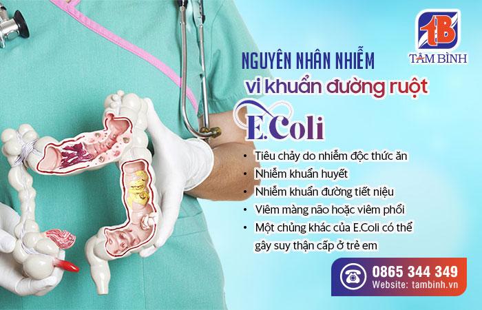 nguyên nhân nhiễm vi khuẩn đường ruột Ecoli