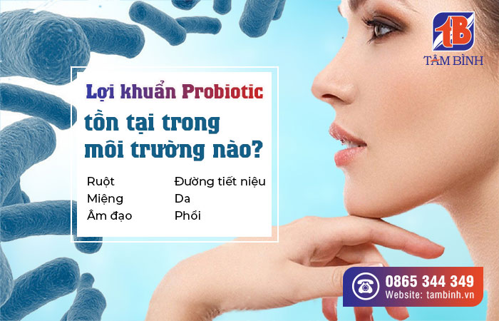 môi trường tồn tại của probiotic
