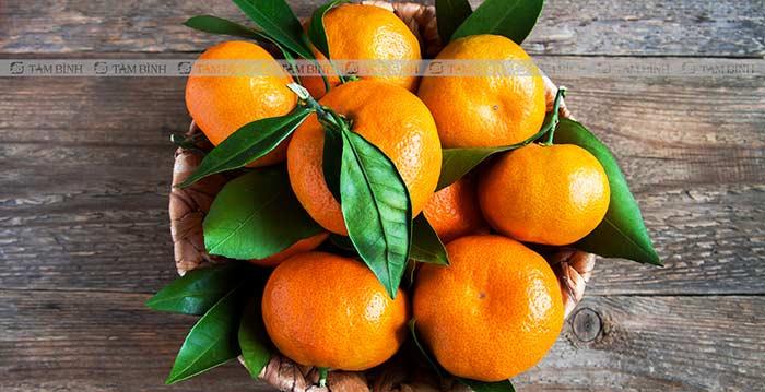 tinh trùng loãng nên ăn cam, quýt