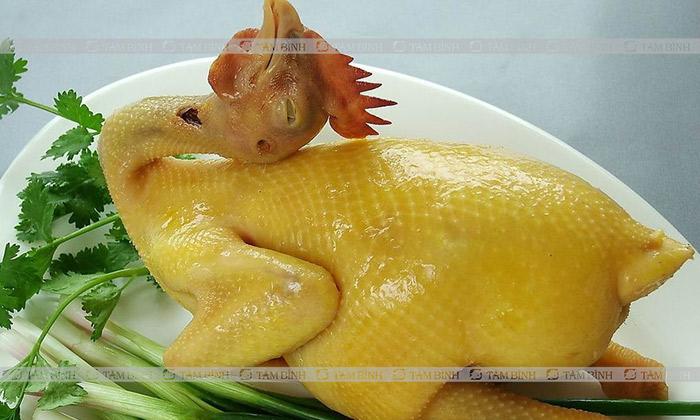 Thịt gà luộc dành cho người bệnh gout