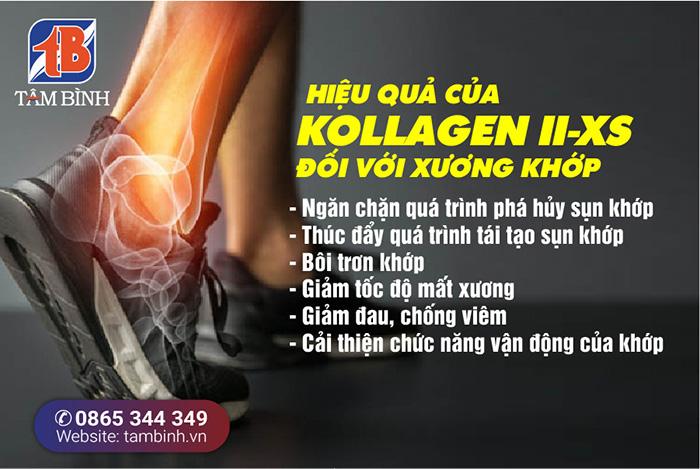 Hiệu quả của Kollagen ii-xs đối với bệnh xương khớp