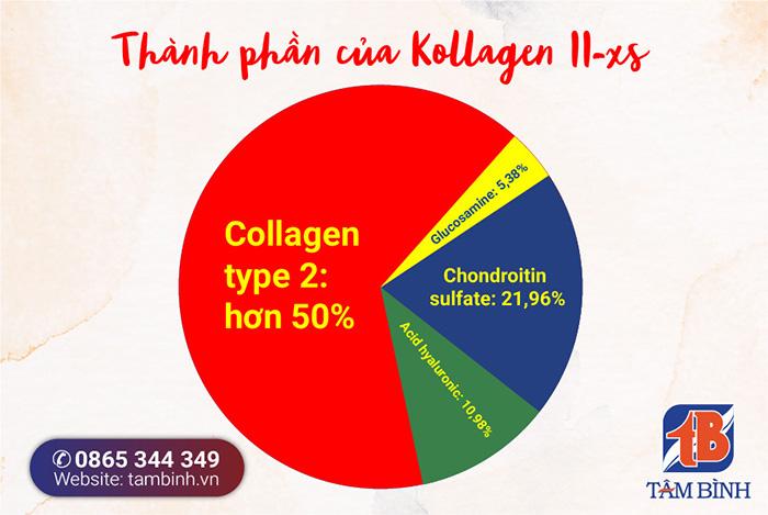 thành phần của kollagen ii-xs