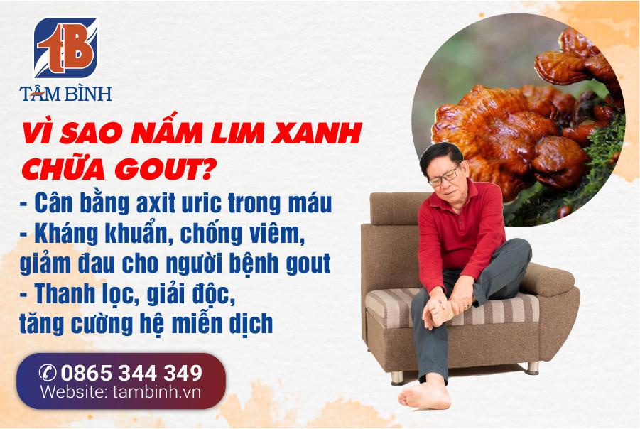 Công dụng nấm lim xanh chữa bệnh gout