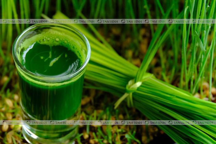Uống nước lá hẹ giúp tăng cường sinh lý nam