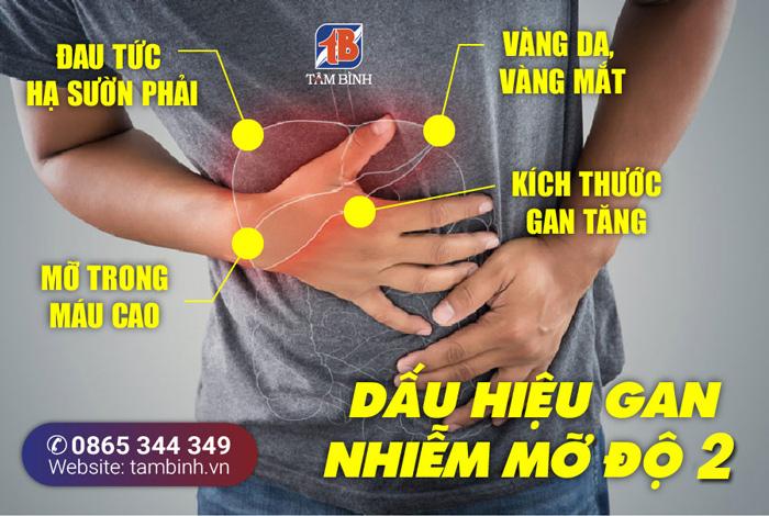 triệu chứng gan nhiễm mỡ độ 2