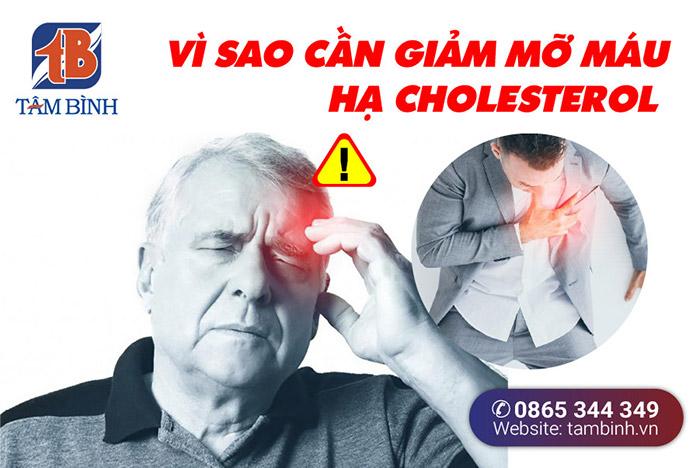 vì sao cần giảm mỡ máu, hạ cholesterol