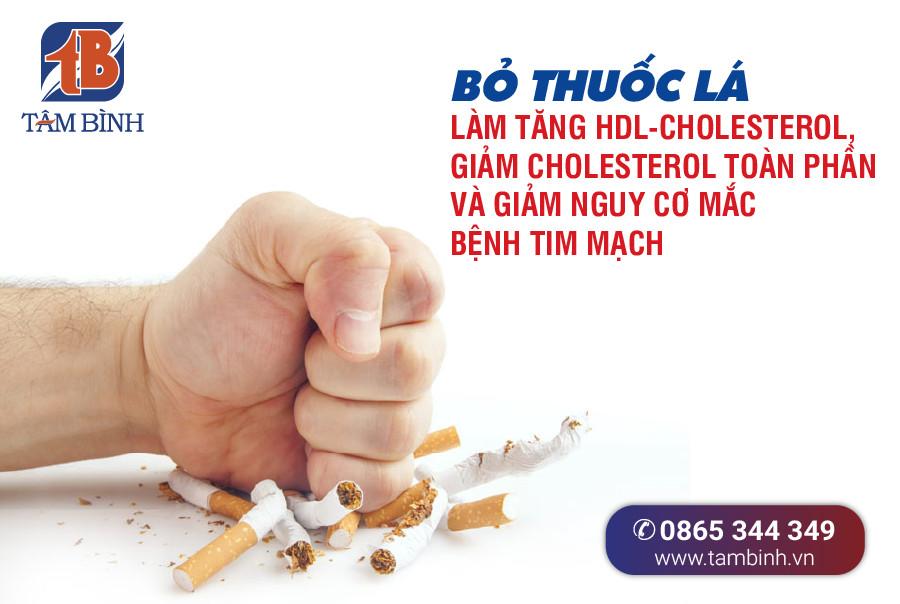 Giảm mỡ máu từ việc bỏ thuốc lá
