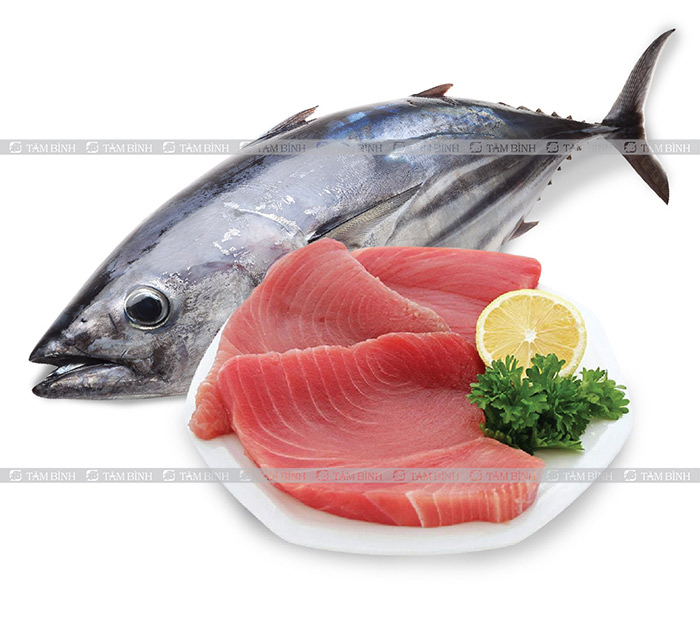 Cá ngừ tốt cho người mỡ máu