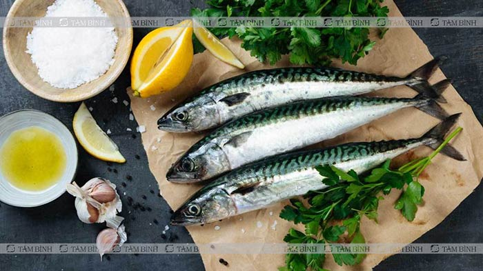 lựa chọn cá giáu omega3