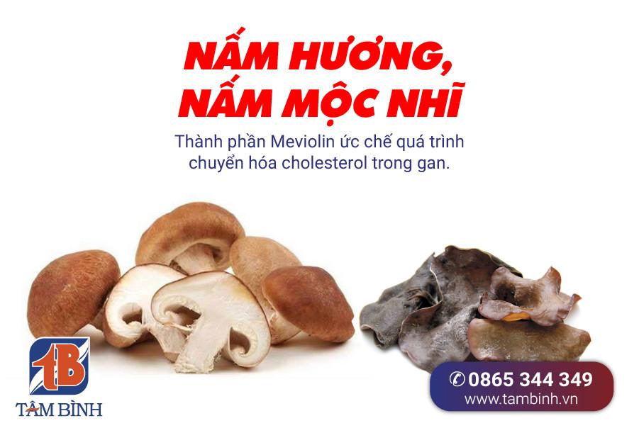Các loại nấm giúp giảm cholesterol trong máu