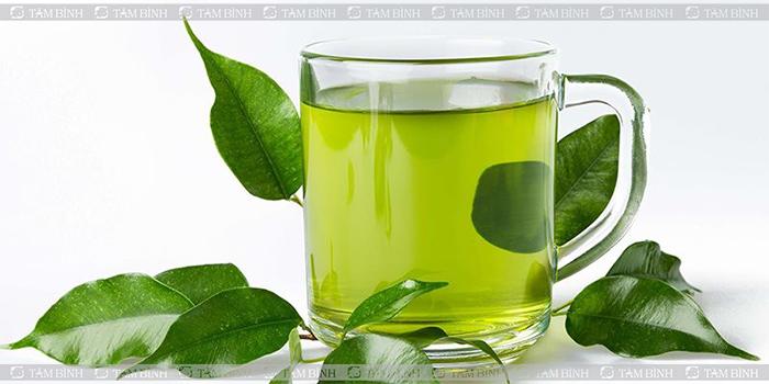 chữa máu nhiễm mỡ bằng trà xanh