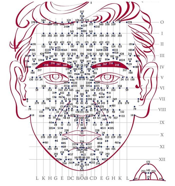 Hệ thống huyệt đạo trong diện chẩn học