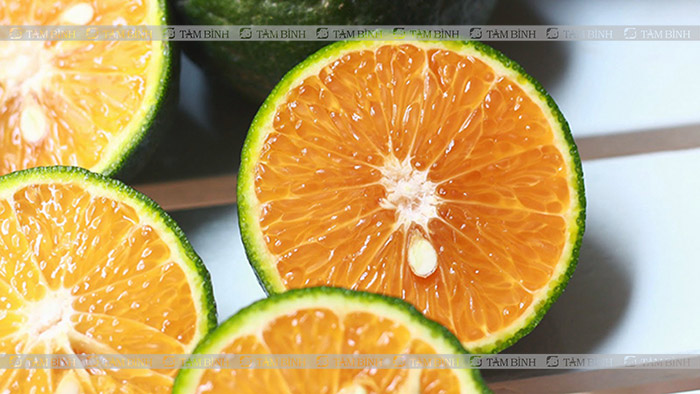 Cam giúp tăng HDL-cholesterol