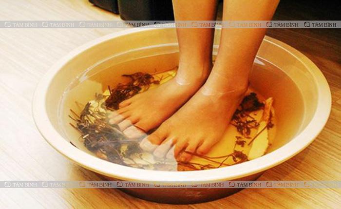 Bài thuốc nam ngâm chân hỗ trợ điều trị tai biến