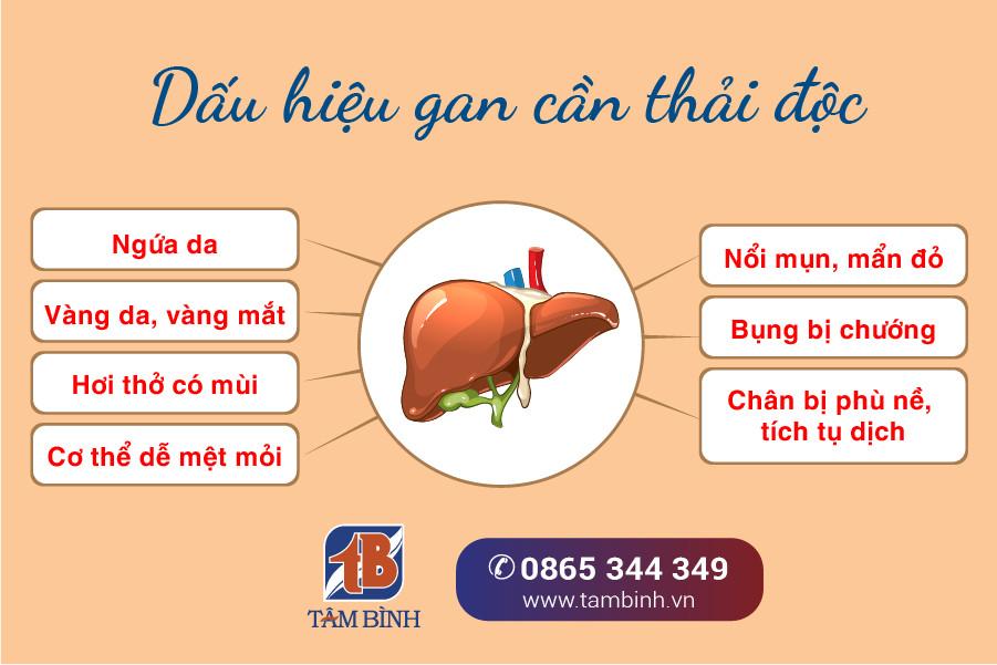 Dấu hiệu gan cần thải độc