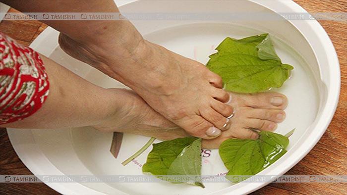 thuốc dân gian chữa tê lòng bàn chân tại nhà
