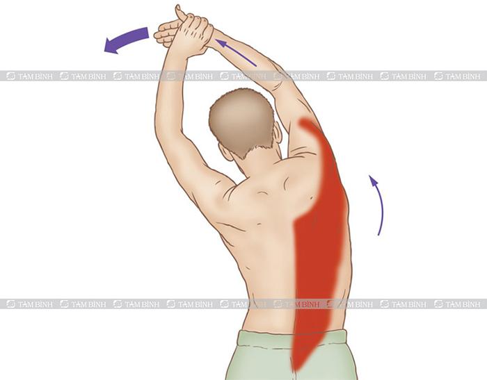 bài tập kéo căng cơ cạnh sườn chữa vẹo cột sống