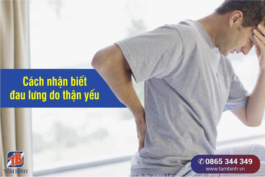 dấu hiệu thận yếu gây đau lưng
